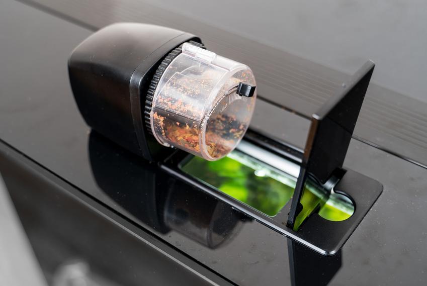 Automatyczny karmnik dla ryb zamontowany na akwarium, a także porady zakupowe