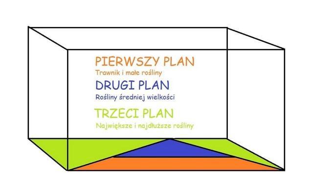 Tabelka przedstawiająca plan akwarium, a także limnophila sessiliflora i jej wymagania