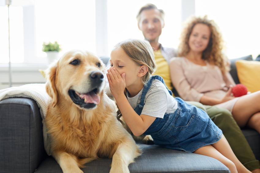 Dziewczyna z psem i rodzcami w tle, a także wskazówki, jak namówić rodziców na psa