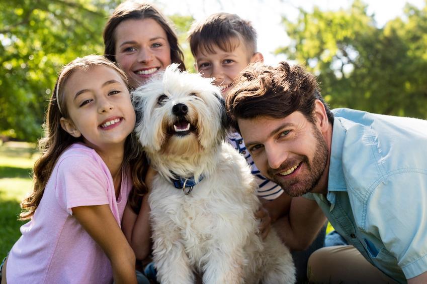 Uśmiechnięta rodzina z psem, a także porady, jak namówić rodziców na psa