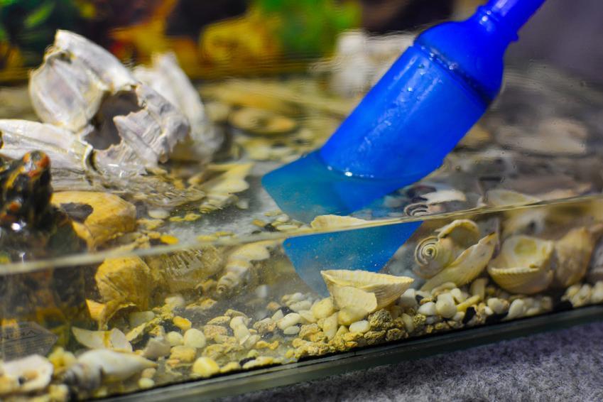 Akwarium podczas oczyszczania, a także włóknina filtracyjna, mata filtrująca i cena