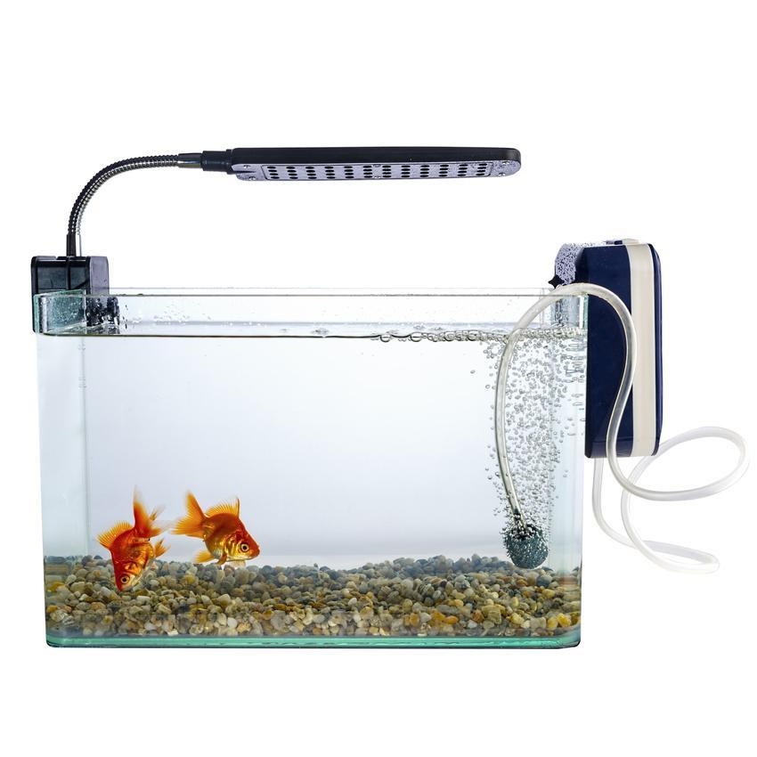 Akwarium na białym tle z lampą, a także lampa uv do akwarium, zastosowanie i cena