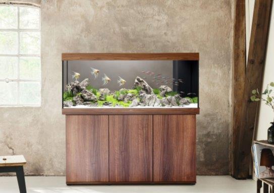 Akwarium JUWEL na drewnianej półce, a także zestawy akwariowe i porady zakupowe
