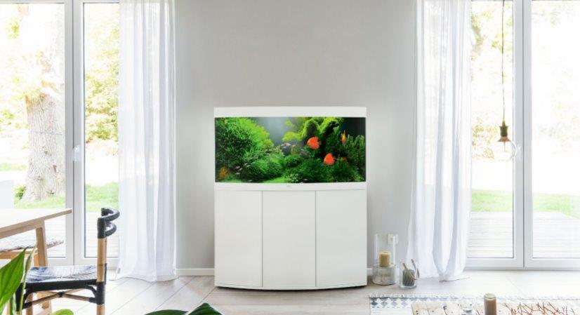 Akwarium JUWEL na białej półce, a także modele, ceny i porady