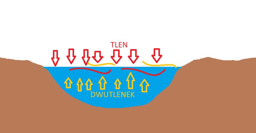 Schemat wody w jeziorze