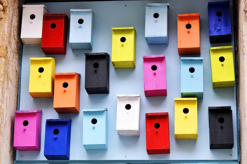 Budki lęgowe dla papug w różnych kolorach o optymalnych wymiarach, idealne do dużej klatki.