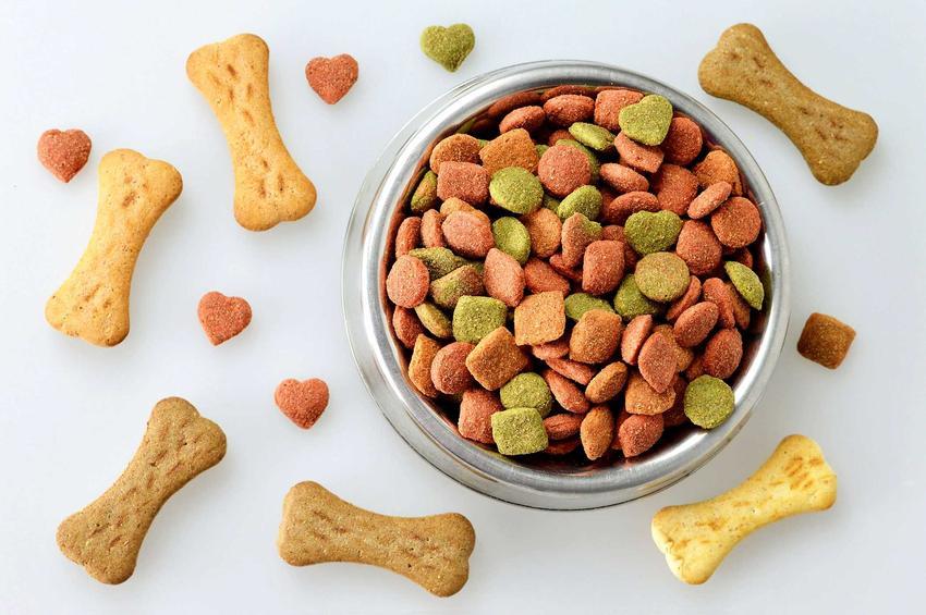 Karma Acana dla psa dorosłego w misce a także skład, zawartość białka i wartości odżywcze jedzenia.