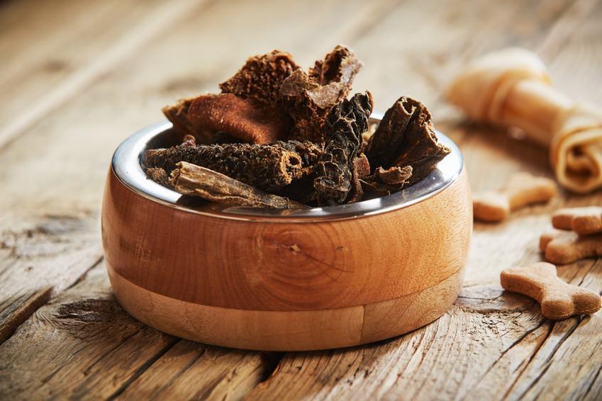 Żwacze wołowe dla psa na misce, a także żwacze dla szczeniąt i zalety oraz wady