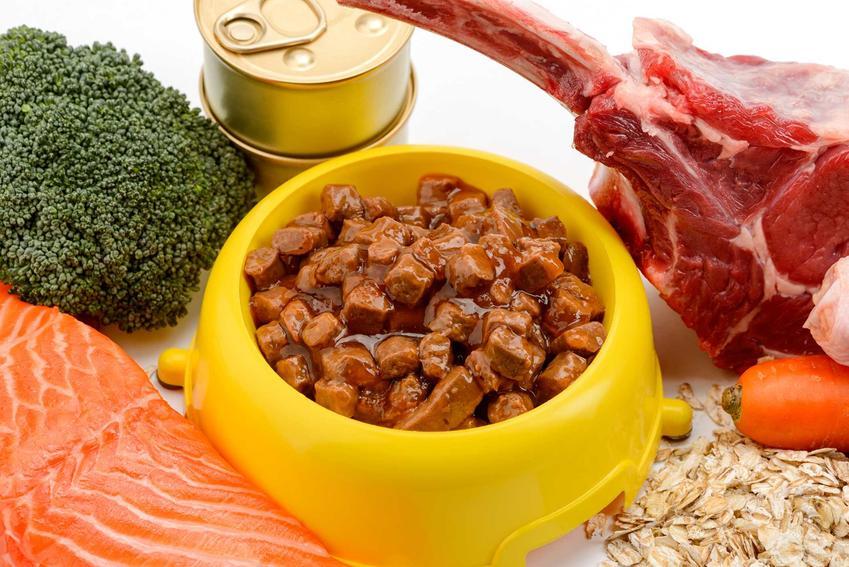 Mokra karma Catz Finefood w plastikowej miseczce, a także łosoś, warzywa i królik oraz informacje o składzie i wartościach odżwyczych