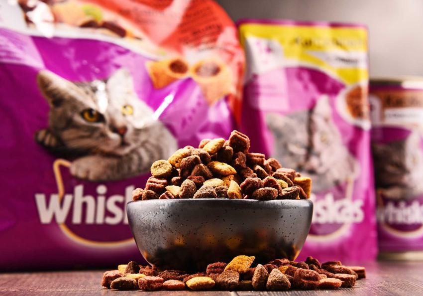 Karma Whiskas w miseczce oraz opakowania z karmą Whiskas w tle, a także informacje, opinie, porady i dokładny skład