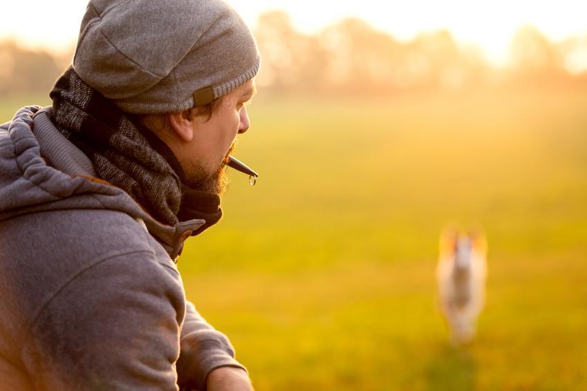 Mężczyzna trzymający w ustach gwizdek dla psa, a także jego dźwięk, zastosowanie i porady