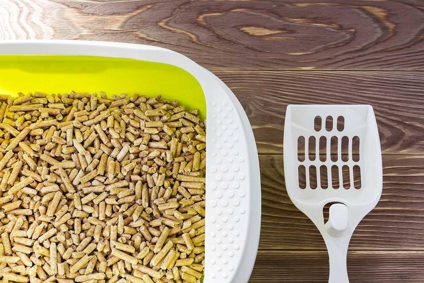 Żwirek kukurydziany w kuwecie z niewielką łopatką, a także informacje, producenci, opinie i zastosowanie