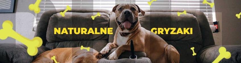 Naturalne gryzaki dla psów od BULT - wzmocnienie diety Twojego pupila