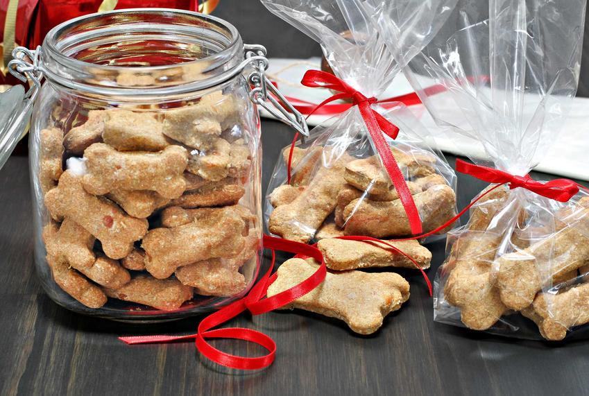 Pojemnik na karmę z przysmakami dla psa, a także najlepsze rodzaje przysmaków dla psów, producenci oraz ceny