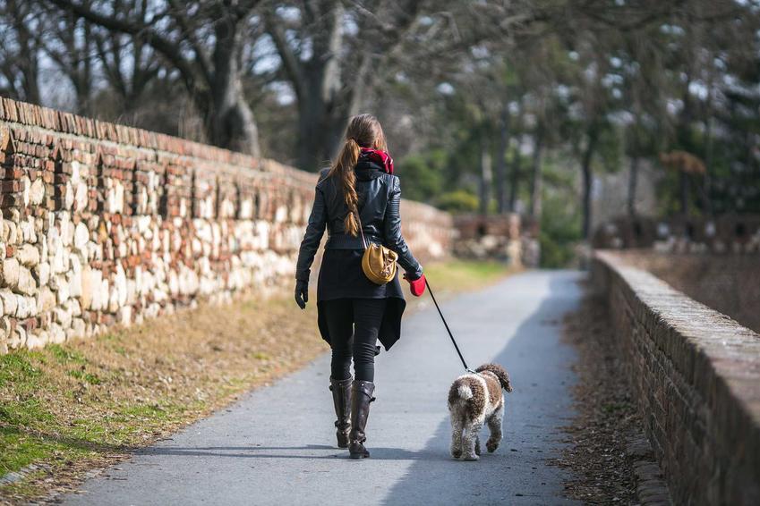 Kobieta wyprowadzająca psa na smyczy flexi, a także informacje o smyczach, czyli rodzaje, ceny, opinie oraz porady dla właścicieli psów