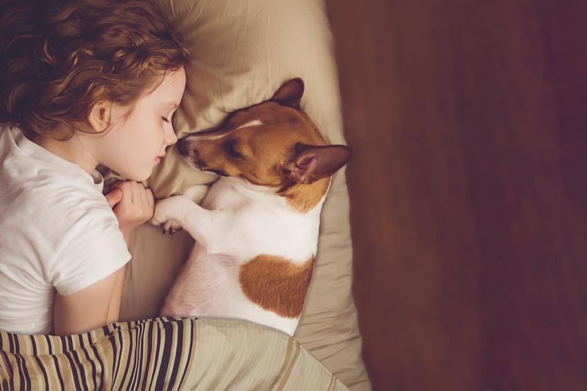 Dziewczynka leżąca na łóżku obok psa oraz porady jaki pies dla dzieci, psy dla dziecka będzie najlepszy