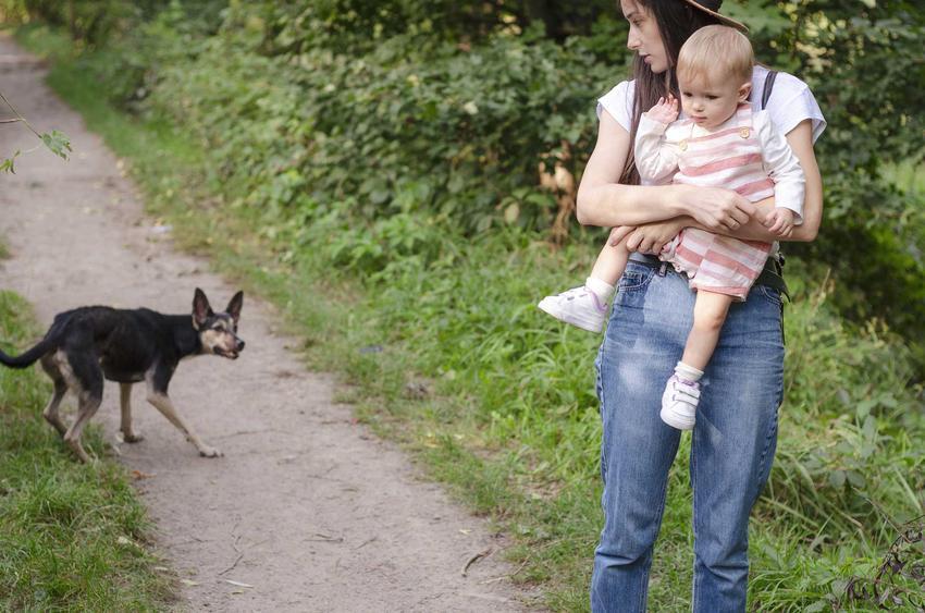Kobieta z dzieckiem obawiająca się psa, a także kynofobia i jej przyczyny, czyli strach przed psami, wskazówki i informacje
