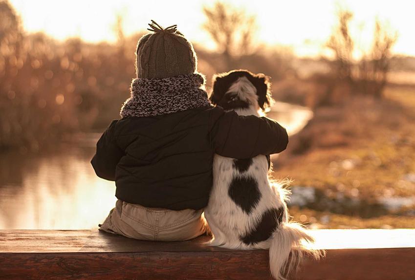 Dziecko z psem siedzący nad stawem, a także jak pogodzić dziecko i psa oraz kontakty między psem a dzieckiem krok po kroku