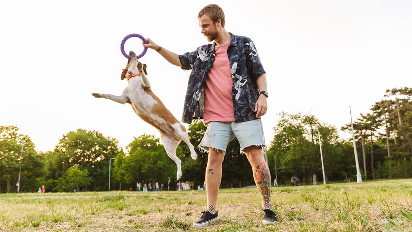 Zlokalizuj swoje zwierzę na każdym spacerze — czyli dlaczego Twój pies powinien mieć lokalizator z GPS