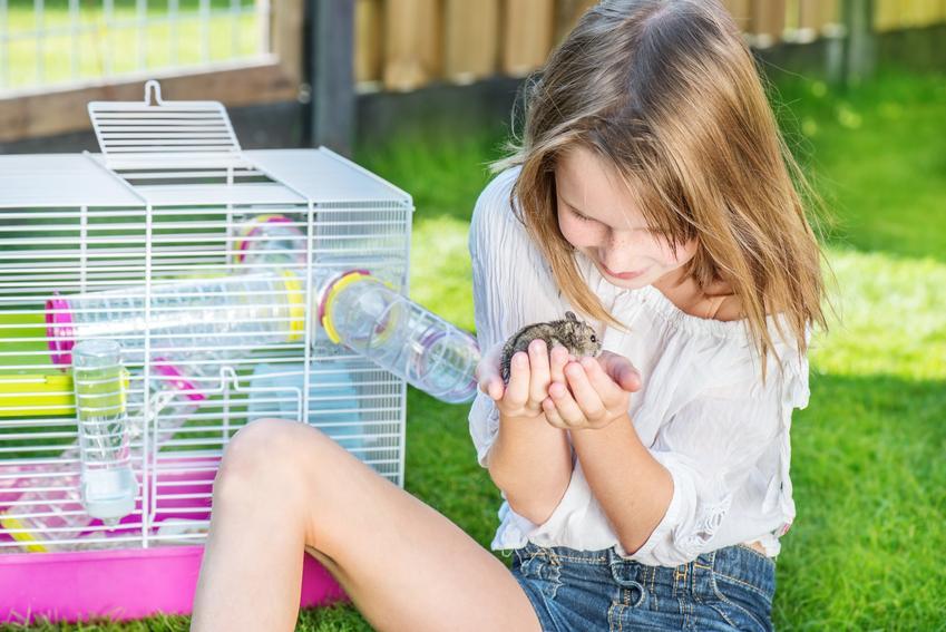 Dziewczynka trzymająca na ręcach chomika obok klatki, a także jak oswoić chomika