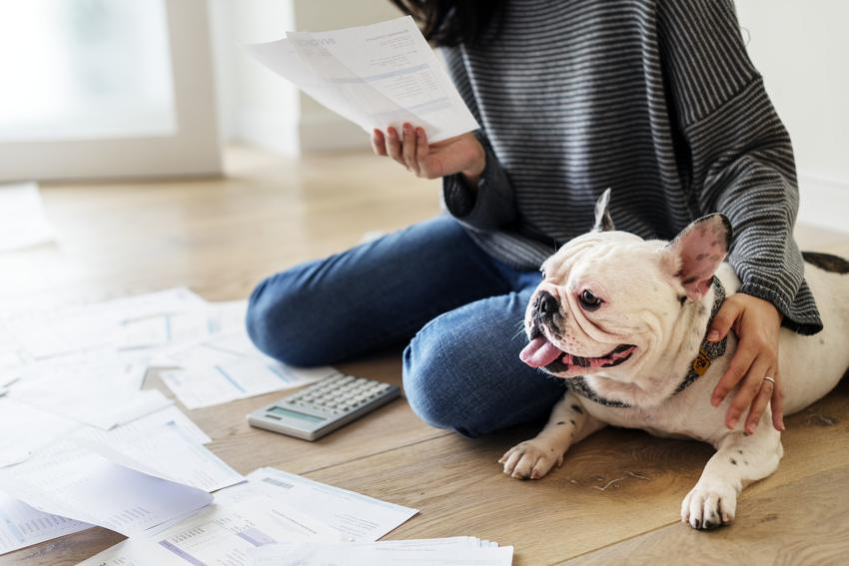 Pies ze swoim właściciele przeglądającym rachunki oraz informacje, ile wynosi podatek od psa