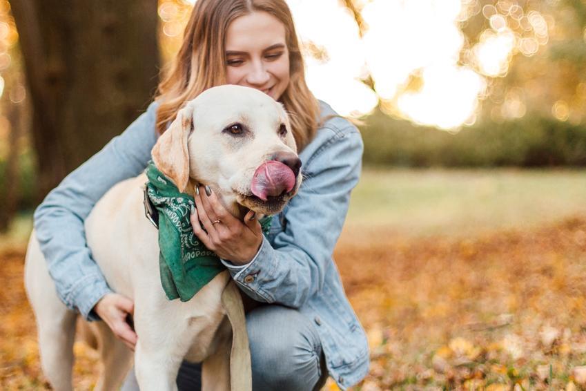 Kobieta z psem podczas spaceru, a także porady jak wychować psa, czyli wychowanie małego psa w domu