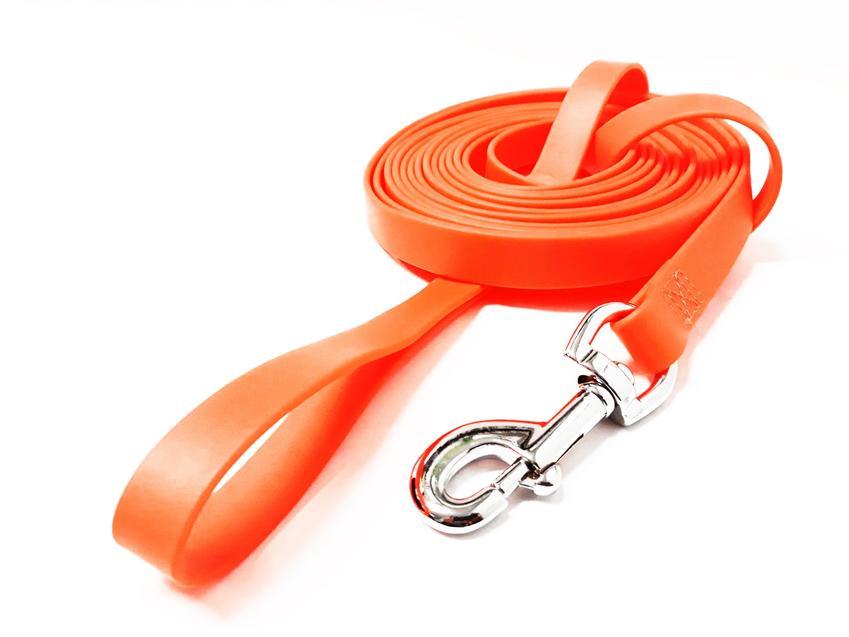 Pomarańczowa smycz dla psa na białym tle, a także inne akcesoria i rzeczy dla psa, które trzeba kupić