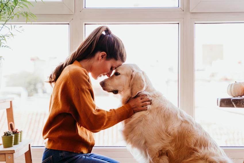 Właścicielka przytulająca się do psa, a także porady jak oduczyć psa skakania na właściciela i innych