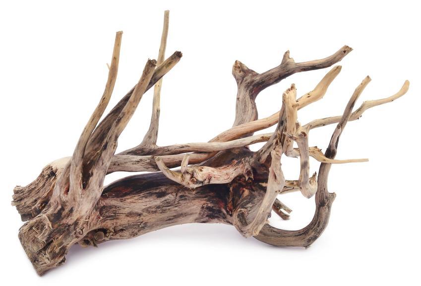 Bauplast - korzenie w rzemiośle