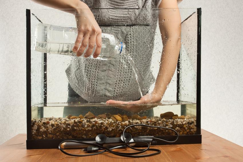 Kobieta kolewająca wody do akwarium oraz porady, jaka woda do akwarium będzie odpowiednia