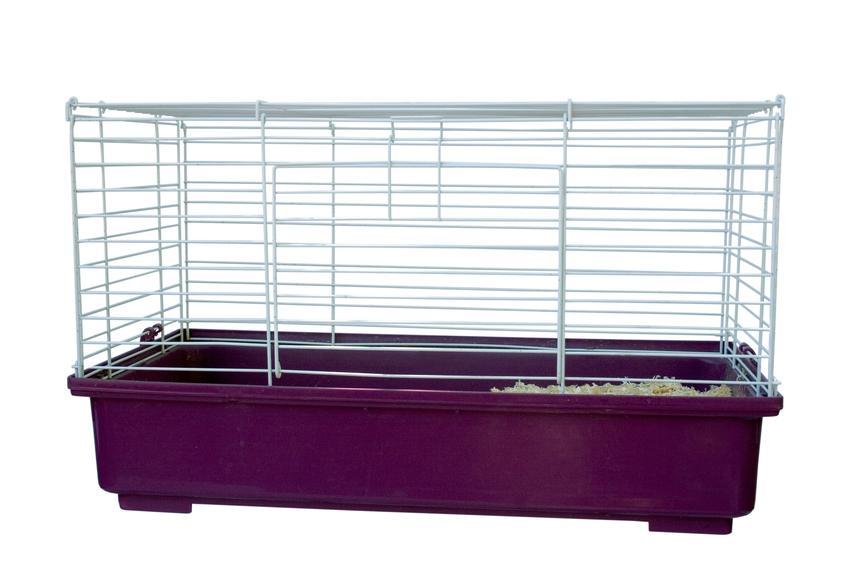 Klatka dla gryzonia na białym tle, a także klatka dla myszoskoczka z wyposażeniem