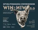 Portrety, które mogą zmienić los psów ze schroniska. Zapraszamy  na charytatywny wernisaż Michała Torzeckiego