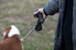 Woreczki na psie odchody - rodzaje, ceny, wielkości