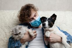 Koronawirus u psa i kota – objawy, badania, leczenie, powikłania