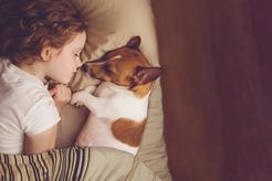 Jaki pies dla dzieci będzie najlepszy? Porównujemy cechy charakteru
